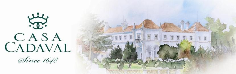 Casa Cadaval (2)