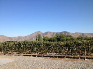 Chile paisagem