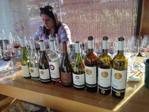 Miguel vinhos