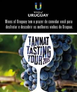 Wine Tasting Uruguai (2)