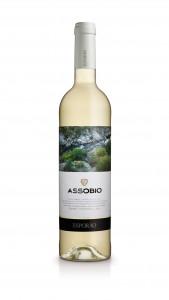 assobio-branco-2015
