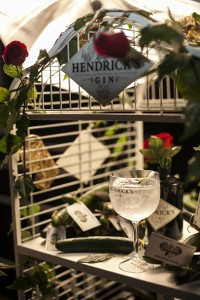 Hendricks - Dia Mundial do Pepino(1)