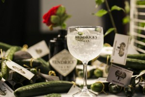Hendricks - Dia Mundial do Pepino(2)