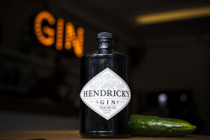 Hendricks - Dia Mundial do Pepino(4)