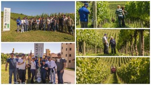 Foto Winemaker Miolo