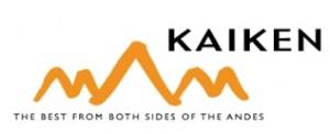 Kaiken logo
